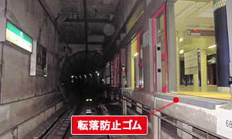 http://www.tokyometro.jp/safety/prevention/station/images/index_img_06.jpg
